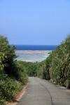 帰りに坂道から新城海岸を望む。