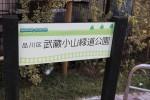 線路跡地は緑道公園に。