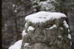 狛犬も雪の帽子を。寒そう。