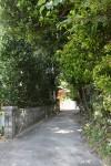 日差しがきつくなってきたので、木陰道が涼しくて気持ちいい。歩くとしゃりしゃりと優しい音がする。静かだ。
