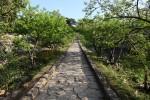 この長い石畳を何百年も前にたくさんの人が歩いたんだな、と思うと感無量。