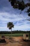 お世話になった方の家の前で。畑が広がる大地。空は南国色。