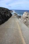 海岸に降りるにはとにかく急坂を下りなければならない。歩きはつらいね。