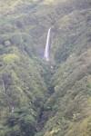ヒロを超えて北側へ。滝が多いです。緑も多い。