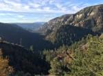 フラッグスタッフからセドナへはかなり下るのです。山道のドライブ。