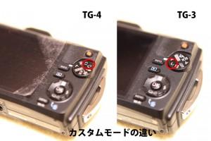 TG4-custom